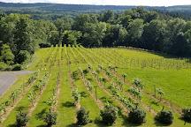 Six Mile Creek Vineyard, Ithaca, United States