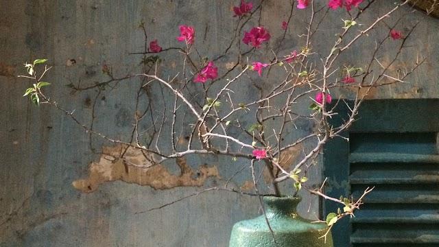 Padma de Fleur