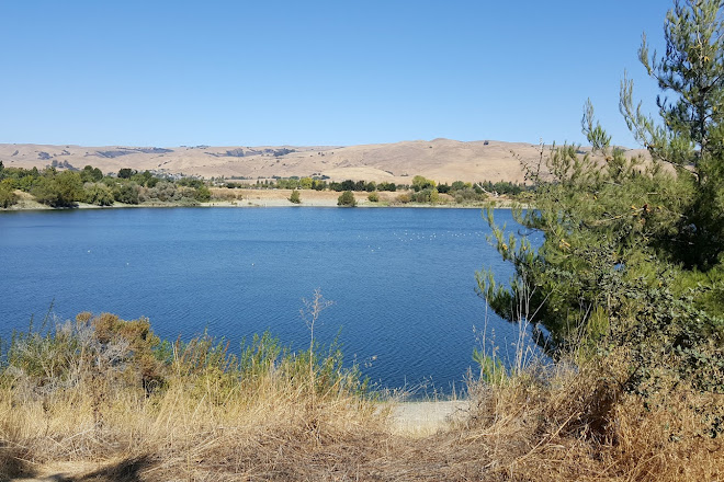 Visit Quarry Lakes Regional Recreation Area on your trip to