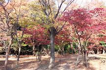 Nadamaruyama Park, Kobe, Japan