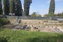 Domus Tiberiana, Rome, Italy