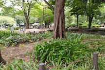 Shimozono Park, Naka, Japan