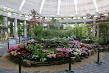 Florante Miyazaki, Miyazaki, Japan