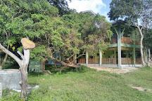 Wilpattu National Park, Saliyapura, Sri Lanka
