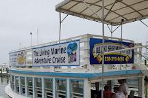Biloxi Shrimping Trip, Biloxi, United States