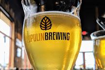 Lupulin Brewing, Big Lake, United States