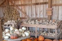 Cedar Hill Farm, Hernando, United States
