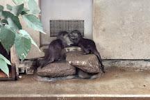 Ichikawa City Zoo, Ichikawa, Japan