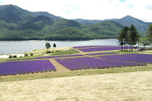 Lake Kanayama Forest Park, Minamifurano-cho, Japan