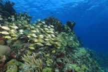Deep Life Divers, Cancun, Mexico