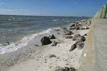 Ben T Davis Beach, Tampa, United States
