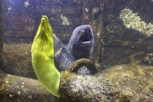 Aquarium d'Amneville, Amneville, France