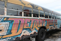 The Detroit Bus Company, Detroit, United States