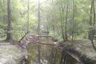 Walterboro Wildlife Sanctuary