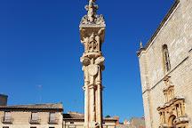 Ribera del Duero, Castile and Leon, Spain