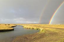 Go Fishing Iceland, Kopavogur, Iceland