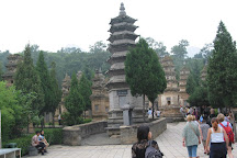 Tower Forest, Dengfeng, China