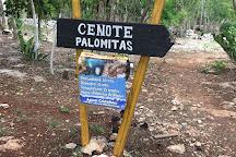 Cenote Palomitas, Valladolid, Mexico