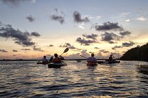 Blue Planet Kayak Eco-Tours, Key West, United States