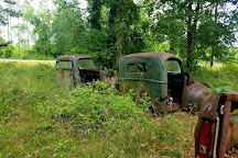 Roadside Rusted Ford Trucks, Crawfordville, United States