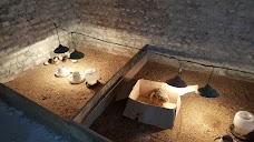 NICON OSTRICH FANCY BIRD FARM COMPANY rawalpindi