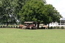 Dutch Creek Farm Animal Park, Shipshewana, United States