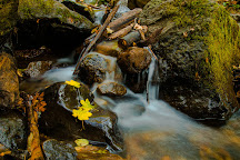 Hedge Creek Falls, Dunsmuir, United States