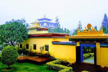 Shechen Monastery, Kathmandu, Nepal
