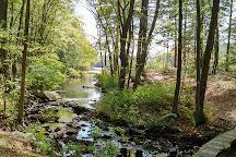 Mowry Conservation Area, Smithfield, United States