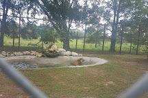 Mystic Jungle Educational Facility Inc, Live Oak, United States