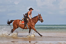 Mozambique Horse Safari, Vilanculos, Mozambique