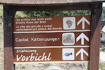 Castel Katzenzungen, Tesimo, Italy
