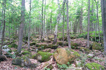 Bruce's Caves Conservation Area, Wiarton, Canada