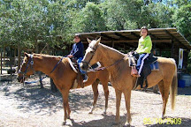 Horse Power for Kids & Animal Sanctuary, Tampa, United States