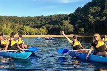 Pittwater Kayak Tours, Palm Beach, Australia
