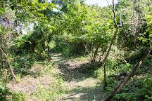 Bosque Protector Cerro Blanco, Guayaquil, Ecuador