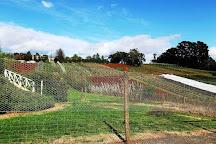 Blue Hills Berries and Cherries, Silvan, Australia