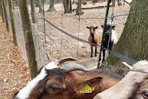 Parc Animalier de Janvry, Janvry, France