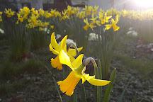 Bunhill Fields, London, United Kingdom