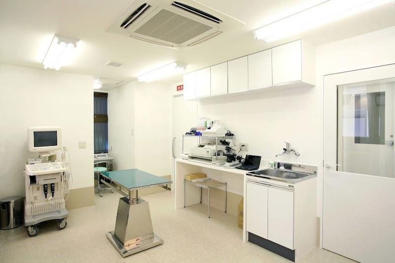 戸部ウータン動物病院