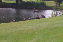 Baseline Golf Course, Ocala, United States
