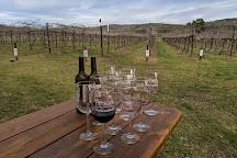 Perissos Vineyards, Burnet, United States