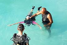 Euro-Divers Kurumba - Scuba Diving Maldives, Vihamanafushi, Maldives