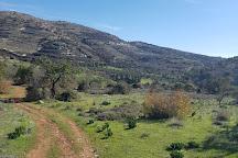 Horse Riding Paphos - Eagle Mountain Ranch, Paphos, Cyprus