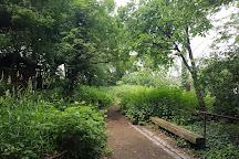 Jardin Sauvage de St-Vincent, Paris, France