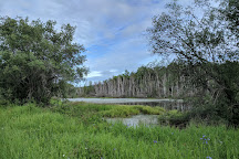 Creamer's Field Migratory Waterfowl Refuge, Fairbanks, United States
