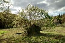 Site Abbatial de Saint-Maurice, Clohars-Carnoet, France
