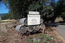 Nelson Family Vineyards, Ukiah, United States