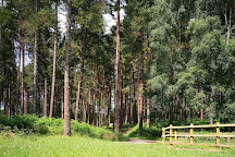 Sherwood Pines Forest Park, Mansfield, United Kingdom