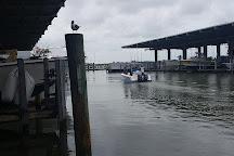 Galveston Sea Ventures, Galveston, United States